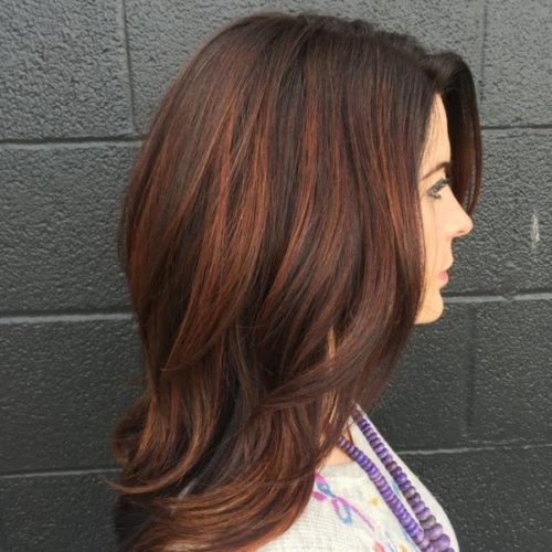 23 Best Brown Hair With Highlights